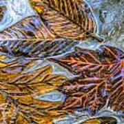 Leaves In Glass Art Print