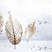 Leaves In Snow Art Print