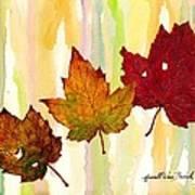 Leaves Of Fall Art Print