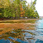 Leaves On Fourth Lake Art Print