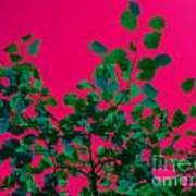 Leaves On Pink Back Lit Sky Abstract Art Print