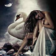 Leda And The Swan Art Print by Shanina Conway