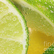 Lemon And Lime Slices In Water Art Print