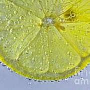 Lemon Slice In Bubbles Art Print