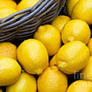 Lemons 01 Art Print