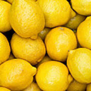 Lemons 02 Art Print