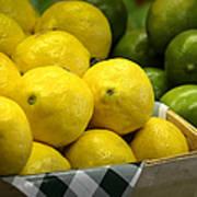 Lemons And Limes Art Print by Julie Palencia