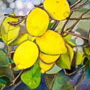 Lemons Print by Debi Starr
