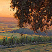 Lenne Vineyard Art Print