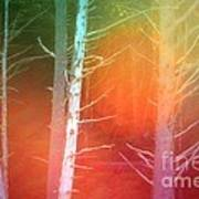 Lens Flare In The Forest Art Print