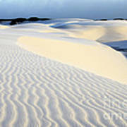 Leoncois Maranhenses Beauty Of Sand Art Print