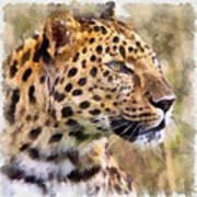 Leopard 7 Art Print
