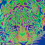 Leopard Eyes Green Art Print