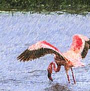Lesser Flamingo Filter Feeding Lake Nakuru Kenya Art Print