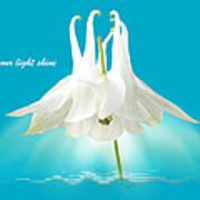 Let Your Light Shine Art Print by Gill Billington