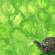 Lettuce Fetish Art Print