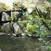 Lewis Creek Trail Art Print