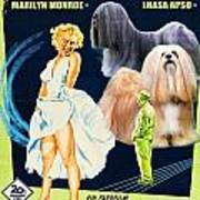 Lhasa Apso Art - The Seven Year Itch Movie Poster Art Print
