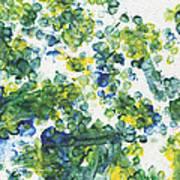 Lians Dandelions Art Print