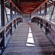 Liberty Bridge Swan Lake Art Print