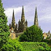 Lichfield Cathedral From The Garden Art Print