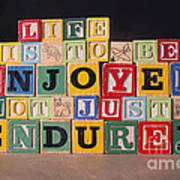 Life Is To Be Enjoyed Not Just Endured Art Print