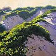 Light Across The Dunes Art Print