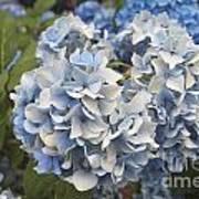 Light Blue Art Print