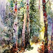 Light In The Woods Art Print