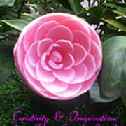 Light Of The Garden Art Print