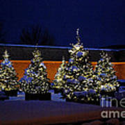 Lighted Trees With Snow Art Print