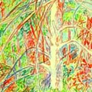 Lightening Struck Tree Again Art Print