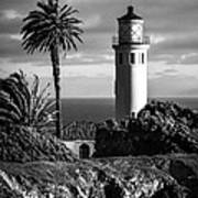 Lighthouse On The Bluff Art Print