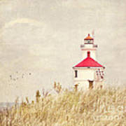 Lighthouse With Red Roof Art Print