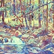 Lighting The Creek Art Print