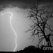 Lightning Tree Silhouette Black And White Art Print