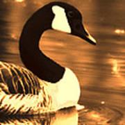 Lila Goose The Pond Queen Sepia Art Print