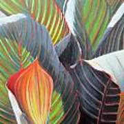 Lilies And Light Art Print