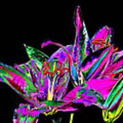 Lilies Pop Art Art Print