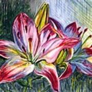Lilies Twin Art Print