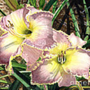 Lillies Clothed In Glory Art Print