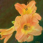 Lilly Enhanced Art Print