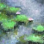 Water Lilly's  Art Print