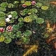 Lily 0147 - Colored Photo 2 Sl Art Print