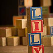 Lily - Alphabet Blocks Art Print