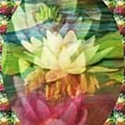 Lily Birth Art Print