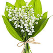 Lily-of-the-valley Bouquet Art Print