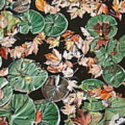 Lily Pads And Leaves Art Print by Anthony Mezza