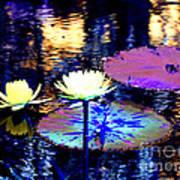 Lily Pond Fantasy Art Print