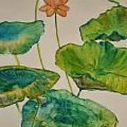 Lilypads 2 Art Print